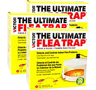 Victor® The Ultimate Flea Trap 3-Pack